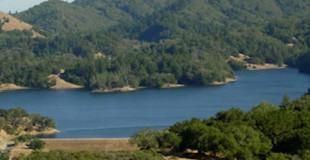 lake banner